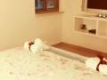 חדר השינה המפנק של קפוצינו בנוף