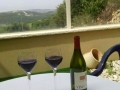 נרים כוס יין בקפוצינו בנוף